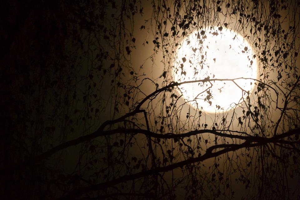 őszi éjjel vers